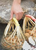 Male Hand Boiling Eggs In Bamboo Basket On Hot Spring In Thailand