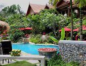 swimming pool in a wonderful garden