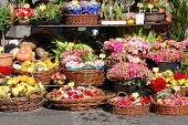 stock photo of flower shop  - Street garden shop - JPG