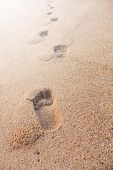 stock photo of footprints sand  - Image of footprints on the sand beach - JPG