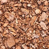 picture of fragmentation  - Wooden mulch ground fragment as abstract background composition - JPG
