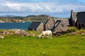 stock photo of religious  - Iona Abbey Scotland Iona Abbey is located on the Isle of Iona just off the Isle of Mull on the West Coast of Scotland - JPG