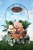 picture of snuggle  - Toy bears  - JPG