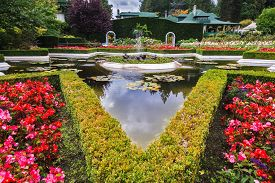 foto of garden eden  - Exquisite fountain among the flower beds - JPG
