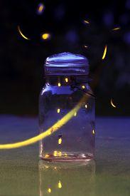 picture of lightning bugs  - Fireflies in a jar - JPG