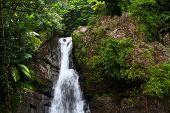 La Mina Falls - Porto Rico
