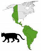 Cougar Range Map