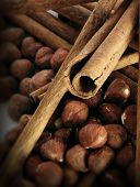 Cinnamon And Hazel Nuts