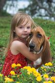 stock photo of basset hound  - little girl hugging her dog in a flower bed portrait - JPG
