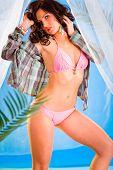 Vogue style photo of sensual girl in bikini posing in summerhouse on beach