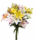 Lily flowers bouquet on white background with clipping path