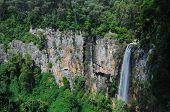 Cascada, Springbrook, Australia