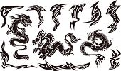 Vector Illustration of Iconic Dragons & Tribal Tattoo Designs
