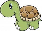 Cute Safari turtle Vector Illustration