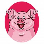 Pig Portrait On White Background. Cartoon Pig Looks Out From The Pink Hole. Pig Face. Pig Animal. Pi poster