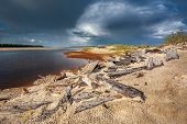 Scenic Landscape Of Nature In Siberia, The Yamal Peninsula. The Bank Of The River Pur In The Rays Of poster