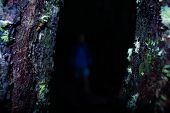 Conceptual Dark Scary Forest With Blurring Man Shrouded In Darkness, Mossy Forest Trees With Eery Wh poster