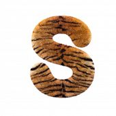 Tiger letter S - Capital 3d Feline fur font isolated on white background. This alphabet is perfect f poster