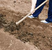 Digging A Soil