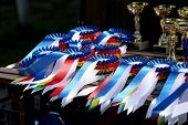 Group Of Horse Riding Equestrian Sport Trophys Badges Rosettes At Equestrian Event  At Summertime poster