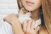 Beautiful Small Girl Holding Gently Little Kitty Cat Touching Cheek poster