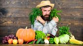 Buy Fresh Homegrown Vegetables. Excellent Quality Vegetables. Man With Beard Proud Of His Harvest Ve poster
