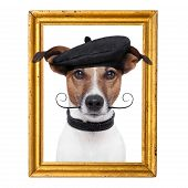pic of border terrier  - painter artist frame dog inside o it - JPG