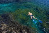 Young Man Snorkeling In Transparent Shallow Ocean