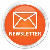 Newsletter Orange Button