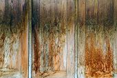 Wall On Plank