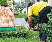 Funcionários cortar grama