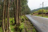 Mount Entoto Road
