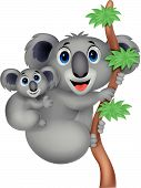 Mother and baby koala cartoon