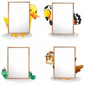 foto of nocturnal animal  - Illustration of the animals hiding at the back of the whiteboards on a white background - JPG