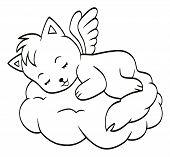 Süße schlafende Engel-Katze