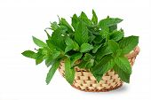 stock photo of peppermint  - Mint leaves in a basket isolated on white - JPG