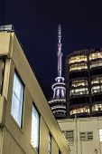Auckland's Skytower looming in the background