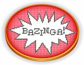 Bazinga Cross Stitch Embroidery, Sewing Hoop