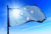 Federated States of Micronesia flag waving on the wind