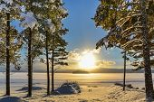 Beautiful Winter Picture Of A Lake With Pine Trees In The Foreground