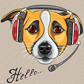 Vector Dog Jack Russell Terrier, Call Center Operator With Phone Headset