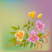 Flower background, alstroemeria
