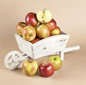 Fresh Apples In A Wooden Wheelbarrow