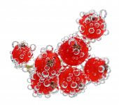 Beautiful ripe red currant in water with bubbles, isolated on white