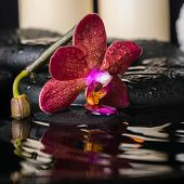Spa Concept Of Deep Purple Orchid (phalaenopsis), Zen Stones With Drops, Candles And Stacked Towels