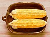 Rustic Raw Uncooked Golden Corncobs