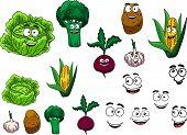 Fresh grocery vegetables set