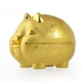 The Golden Pig piggy bank on white background