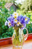 Bouquet Of Blue Cornflowers And Daisies In Jug