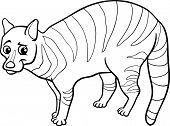 Civet Animal Cartoon Coloring Page